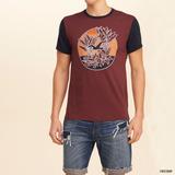 Polo Hollister Camiseta Con Estampa Talla S