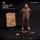Yew Series Canis Spp Jackal 1/12