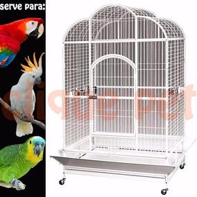 Viveiro Veneza Arara Cacatua Papagaios Ring Neck Jandaia