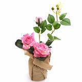 Arranjo De Rosas Artificial Para Mesa Dos Convidados Com 10