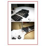 Servicio Guitarras Floyd Rose Y Puente Fijo Ibanez/ Esp/