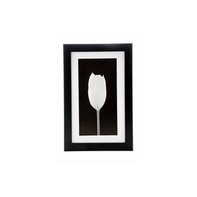 Quadro Tulipa Preto E Branco19 X 29 Cm