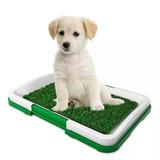 Cesped Artificial Para Pipi De Perro Dentro O Fuera De Casa