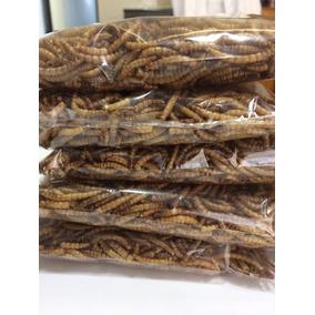 1.800 Em Media - Larvas De Tenebrio Desidratado ( 100g)