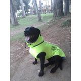 Chaleco Exotic Impermeable Para Los Más Grandes Perros