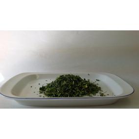 Moringaoleifera Hoja Seca $350 Por Kilo