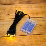 Serie Tira Luces Navidad Con 30 Led 3mt Pilas Cable Verde