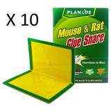 Pack 10 Trampas Ratones Pegajosa 100% Efectiva / Promoferta