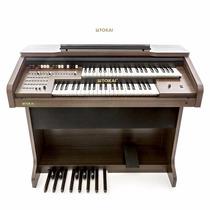 Órgão Eletrônico Tokai Md-10ii + Banqueta Com Compartimento