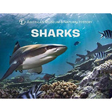 Livro Sharks (science For Toddlers) American Museum Of Natu