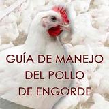 Aprenda Cria De Aves Gallinas Ponedoras Pollos De Engorde