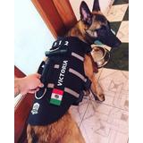 Chaleco K9, Fuerzas Especiales, Personalizado Y Envío Gratis