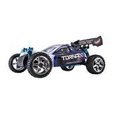 Redcat Racing Buggy Nitro Tornado S30 De 2,4 Ghz Radio (esc