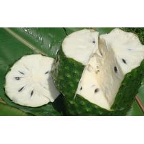 Cubeta De 18 Kg Pulpa De Guanábana