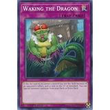 Yu-gi-oh Waking The Dragon - Flod-080 Flames Of Destuction
