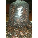 Cacao Tostado Y Pelado X Kg