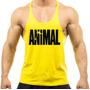 Animal - amarela