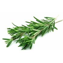 Óleo Alecrim Vegetal 100 % Puro - Frasco Com 60 Ml