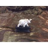 Escultório Em Dente - Elefante - Cor Marfim