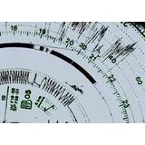 Discos De Tacografo Semanales 125 Km/h (10 Semanas)