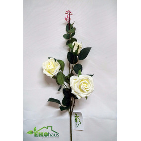 rosas plantas flores
