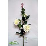 Rosas, Plantas Artificiales, Flores,