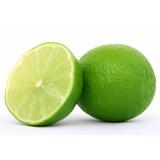 Excelentes Mudas De Limão Taiti Produz Rápido !