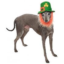 Disfraz Para Perro Sombrero Traje Del Día De Mascotas Rubíe