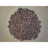 Nozes Pecan Com Casca Novas 2017 5 Kg + 500gr - Frete Grátis
