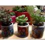 Plantas Suculentas Decoradas En Mini Tazas De Amistad Y Amor