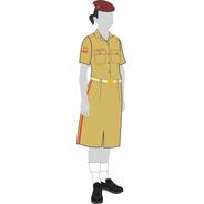 Uniforme Colégio Militar: Saia Cáqui
