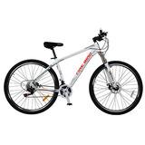 Bicicleta Firebird Rodado 29 Mtb Freno A Disco Aluminio