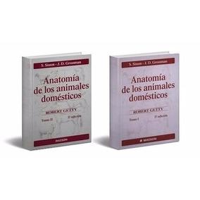 Anatomia Veterinaria De Animales Domésticos 1y2 Digital
