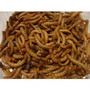 Larva De Oro Viva 500gr Alimento Para Gallo Solo Conocedores