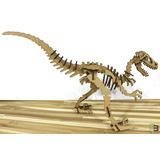 Dinosauro / Quebra Cabeça 3d