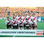 Cuadros De River Plate, Campeon Libertadores De America