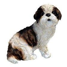 Michael Carr Diseños 80093sue-shih Tzu Cachorro Estatua, Pe
