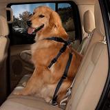 Cinturón De Seguridad Para Mascota Ajustable Con Garantía