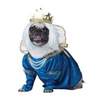 Medieval Reina De Los Huesos Traje De Perro De Mascota K2