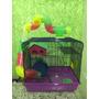 Gaiola Hamster Russo Chines Sirio Gerbil Esquilo Da Mongolia