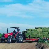 Alfalfa En Pacas