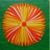 Trio Pinturas Acrílica Sobre Tela Floatingflowers 25x25x4cm