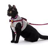 Arnés Para Gatos Diseño Escoces Envio Gratis / Felinus