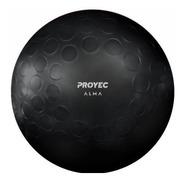 Pelota Yoga Esferodinamia Suiza 75 Cm Gym Fitball Cuotas
