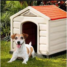 Casa De Perros Pequeños Delivery