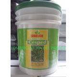 Semillas Cesped Kikuyo Premium Australiano Balde 10kg Guasch