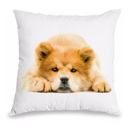 Almofada Akita Presente Almofada Decoração Sofá Cama Pet Cão