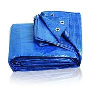 Cubrepileta Cobertor De Rafia De 290 X 590 Irrompible