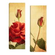 Quadros Decorativos Flores Par 20x60cm Para Sala Quarto R2