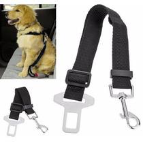 Correia Cinto De Segurança Para Pet